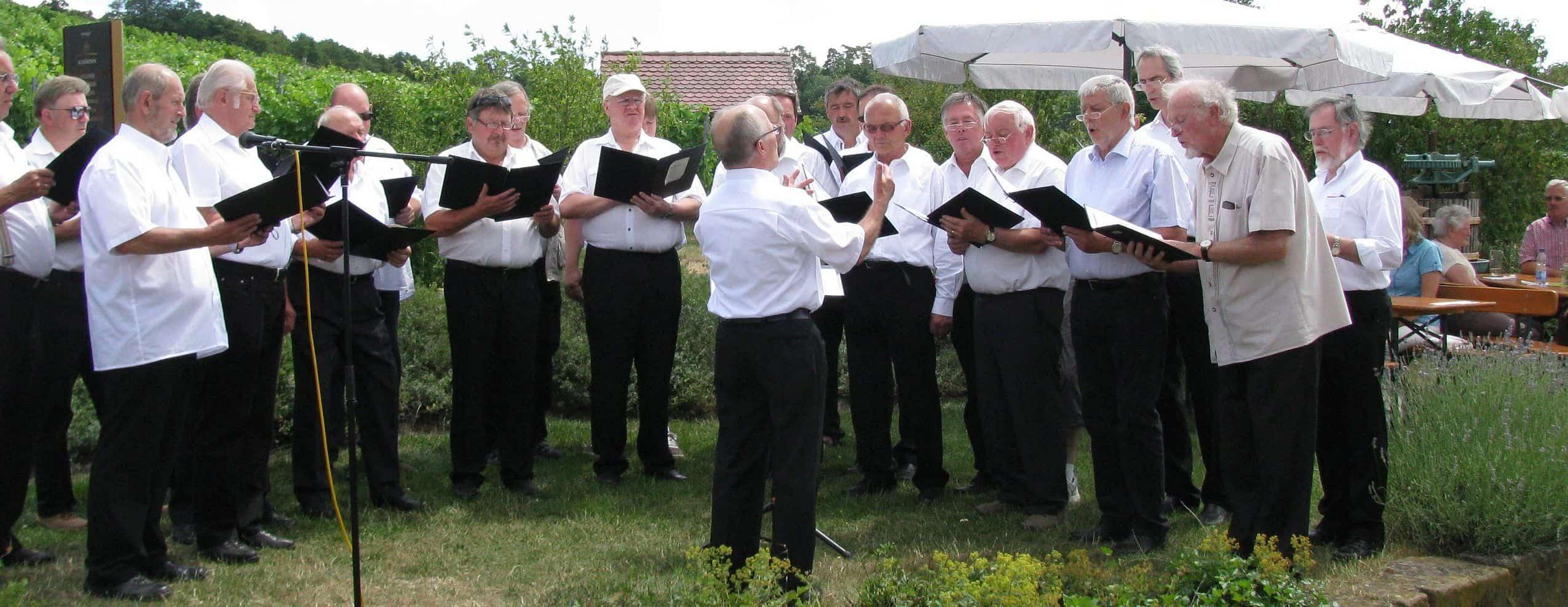 Gesangverein Frohsinn Ipsheim beim Singen in den Weinbergen